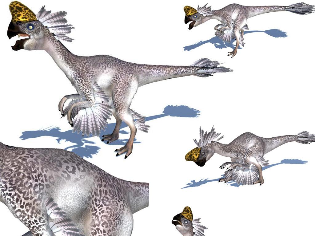 超写实恐龙窃蛋龙偷蛋龙带材质贴图绑定各种动画图片下载fbx素材 游