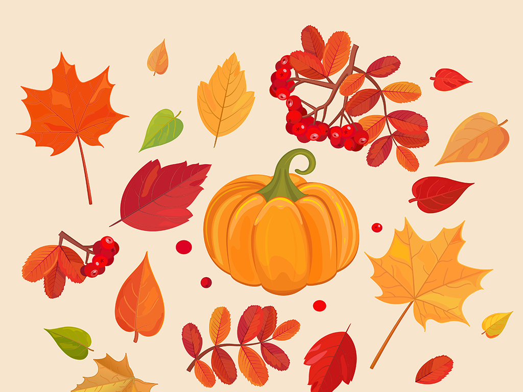 手绘素材手绘手绘清新手绘秋季卡通枫叶图片枫叶图片红枫叶枫叶飘落