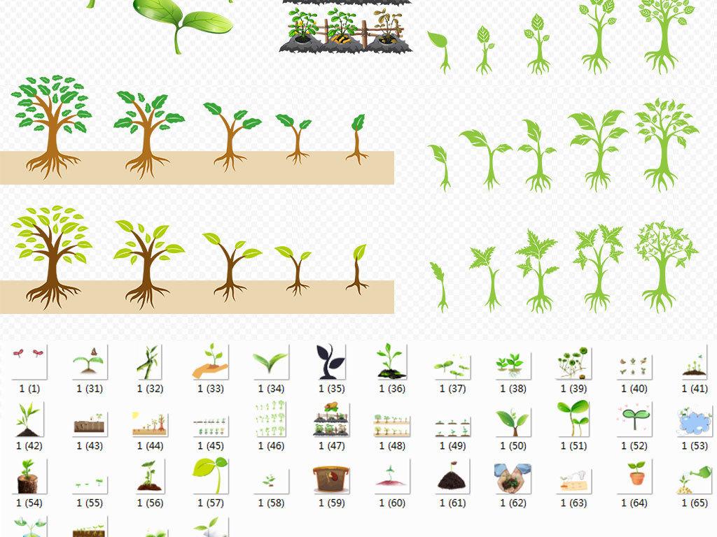 大树爱护守护保护爱心植树节小树苗成长种子素材节日素材照片背景图片