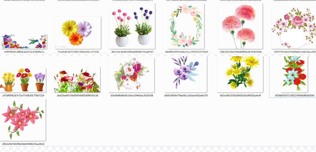 鲜花角花矢量图