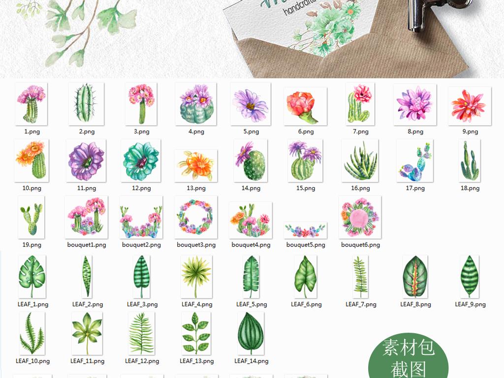 水彩鲜艳花卉仙人掌热带雨林树叶png免抠海报请帖设计
