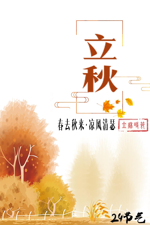 稻田                                    手绘插画
