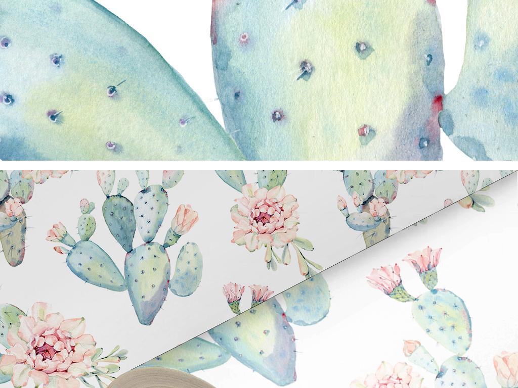手绘水彩仙人球仙人掌盆栽壁纸墙纸墙贴61