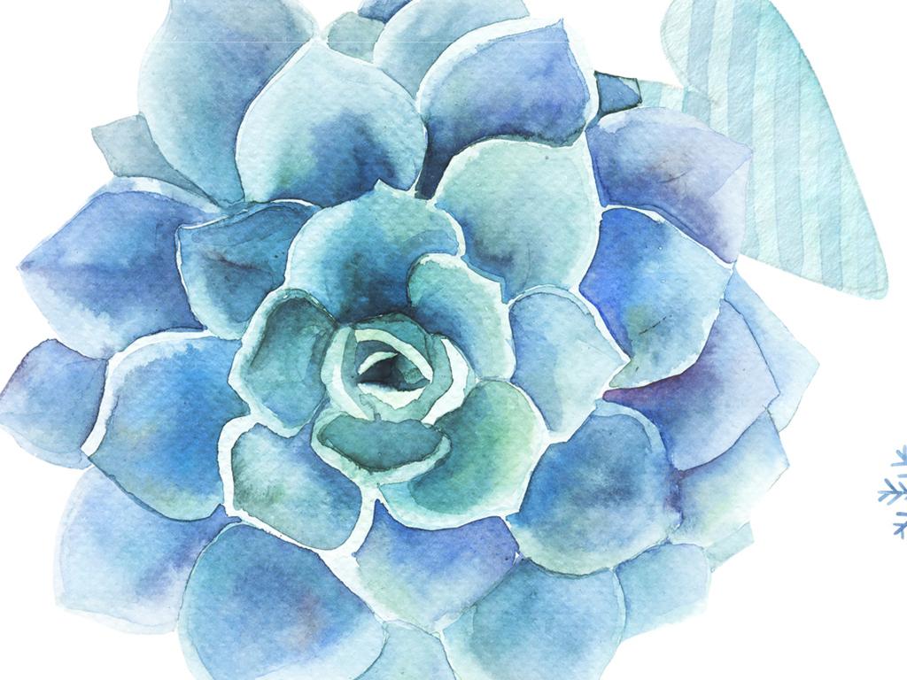 手绘水彩多肉盆栽植被花卉壁纸墙纸墙贴66