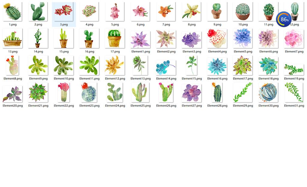手绘水彩多肉植物仙人掌高清png图片