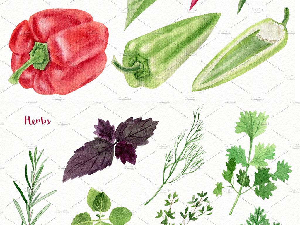 高清手绘水彩插画蔬菜png合集素材