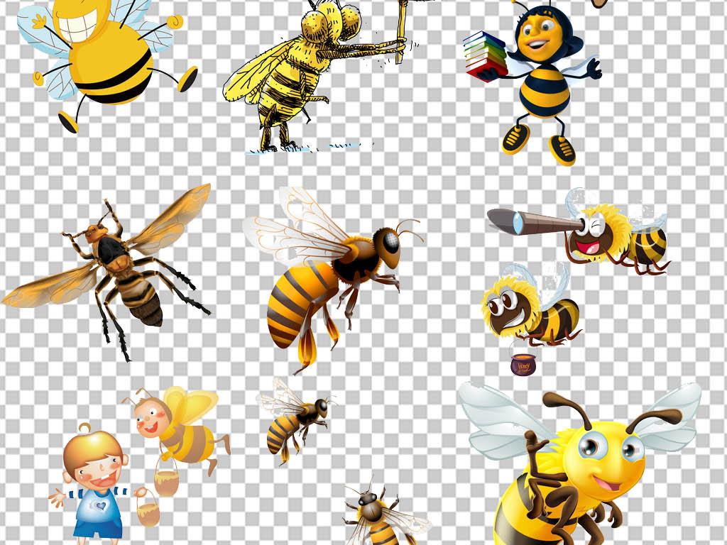 手绘蜜蜂蜜蜂特写蜜蜂素材素材特写小学幼儿园素材广告蜂蜜