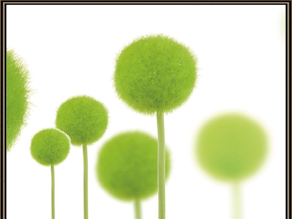 现代唯美清新欧式绿球蒲公英三联画画背景墙图片
