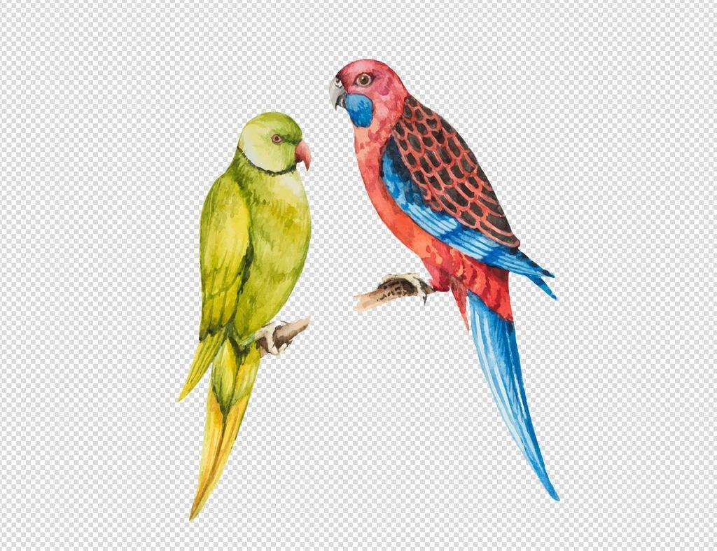 原创设计卡通鹦鹉动物设计PNG透明背景免扣...素材是用户QQ1BC3A468在2017-08-06 15:19:37上传到我图网, 素材大小为1.00 MB, 素材的尺寸为1193px916px,图片的编号是26905900, 颜色模式为RGB, 授权方式为VIP用户下载,成为我图网VIP用户马上下载此图片。