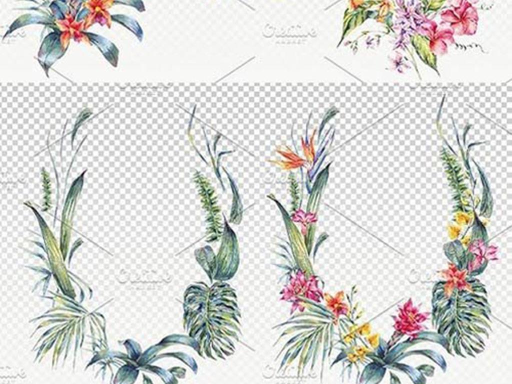 手绘花卉热带雨林png素材
