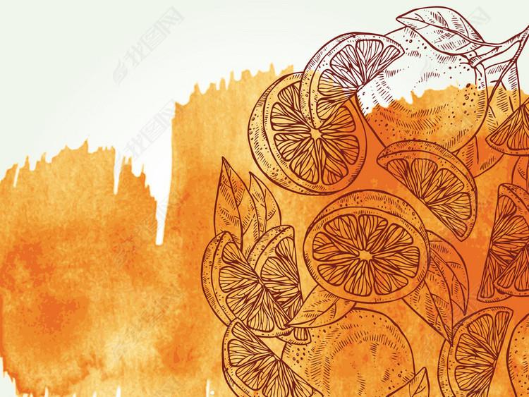 新款橘子设计图无缝水果植物