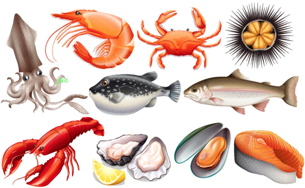 设计元素 自然素材 动物 > 2017矢量写实风海鲜鱼虾螃蟹龙虾三文鱼