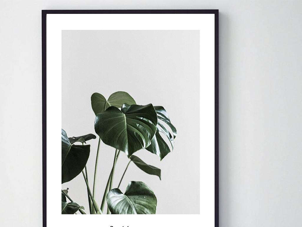 小清新现代简约热带树叶单幅装饰画