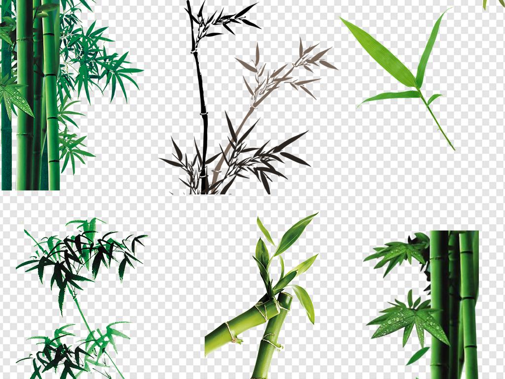 卡通手绘竹子水彩竹子竹叶图案树叶青竹竹子图片绿色图片素材绿色竹子