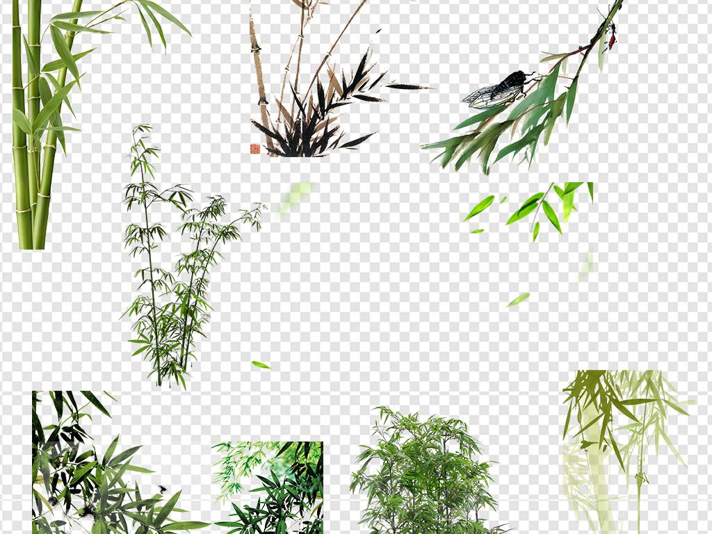 手绘竹子水彩竹子竹叶图案树叶青竹竹子图片绿色图片素材绿色竹子绿色