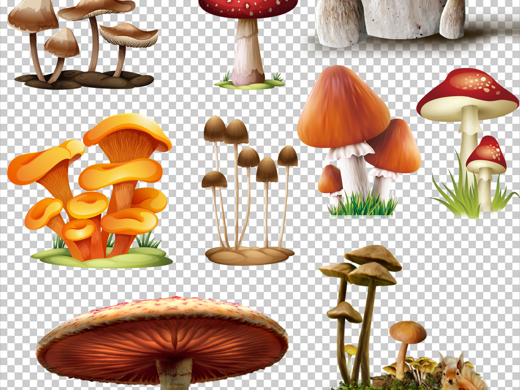 蘑菇屋简笔画带颜色