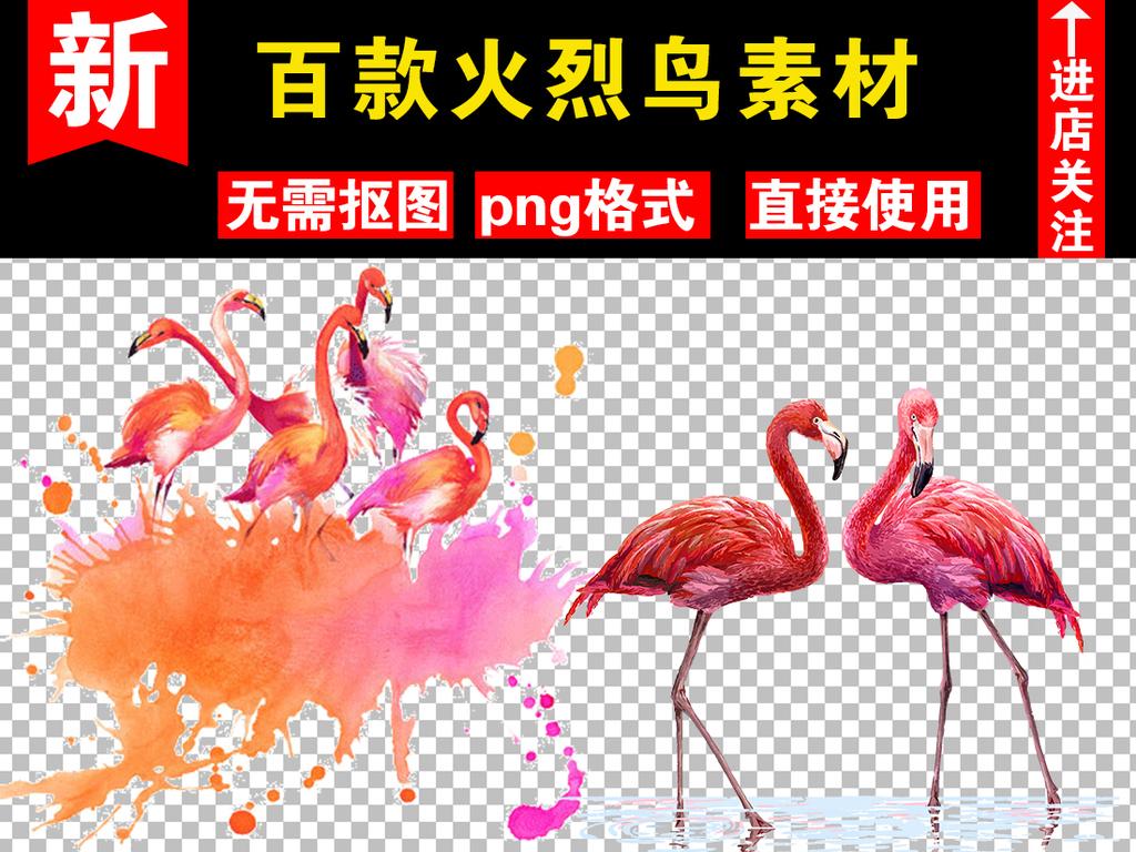 百款手绘火烈鸟png元素火烈鸟素材合集