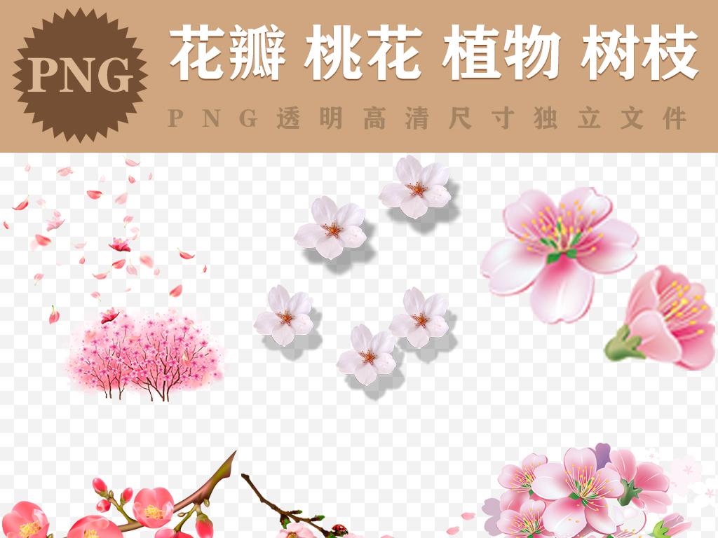 梅花樱花手绘花樱花桃花花朵浪漫樱花浪漫花朵图片素材浪漫桃花粉红色