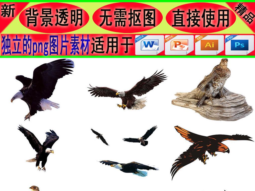 飞行动物老鹰免抠png素材1