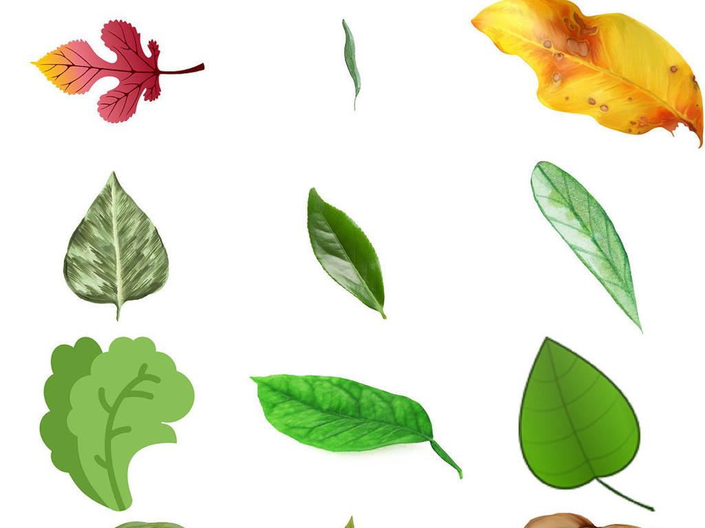 高清叶子绿色手绘大图