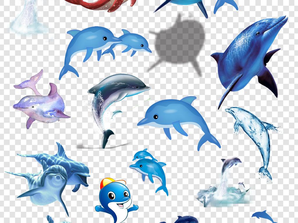 手绘海豚水彩海豚哺乳动物卡通海豚海豚卡通png卡通海豚素材海豚湾