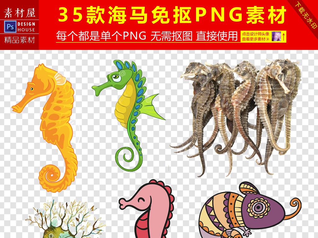 卡通手绘海马png海报素材