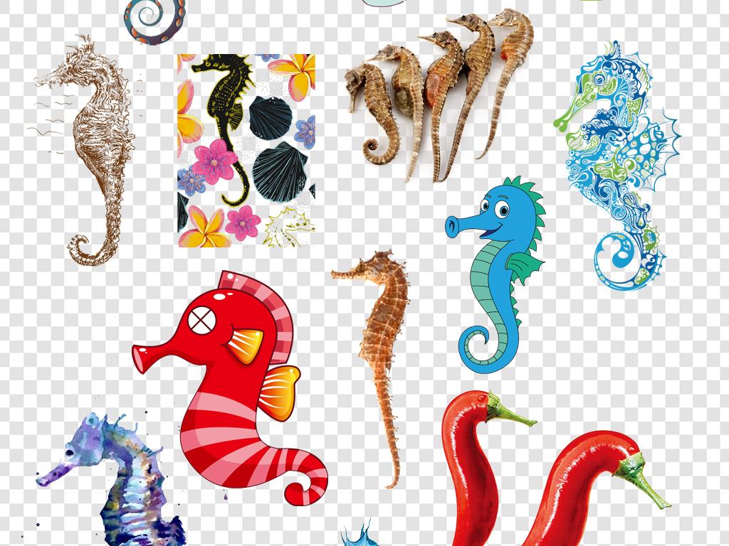 植物萌萌哒大眼睛海马干卡通手绘海马装饰图案儿童玩具粉色海马卡通图片