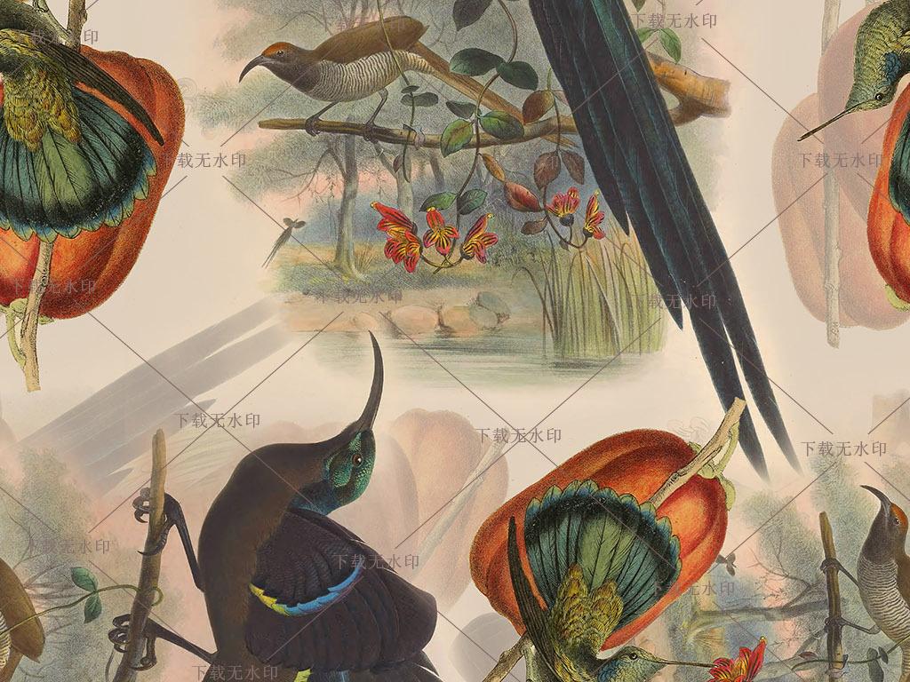 手绘天堂鸟图案极乐鸟数码印花南瓜花鸟花型