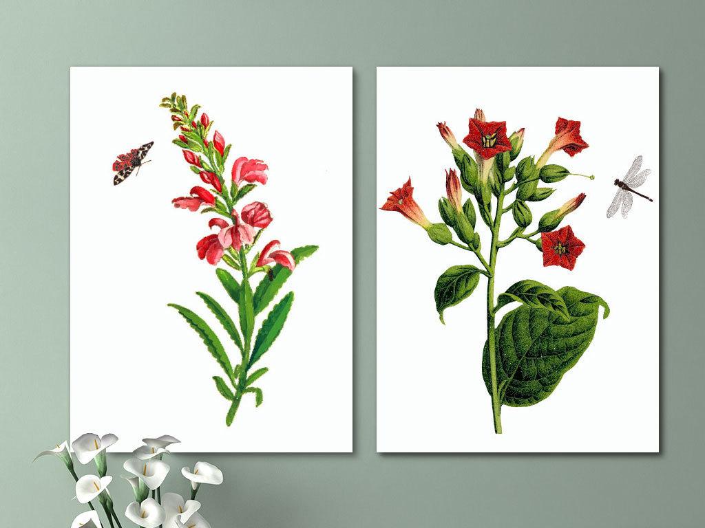 背景墙|装饰画 无框画 植物花卉无框画 > 春夏秋冬植物无框画图片