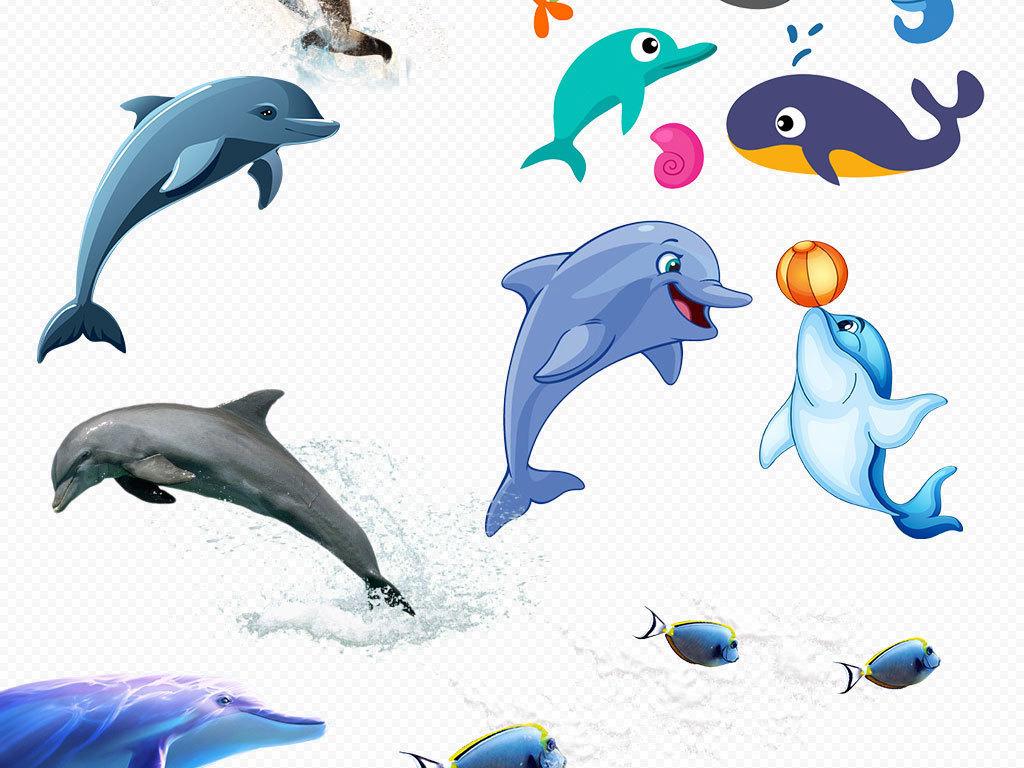 海洋馆小报保护水族馆海底世界png素材图片