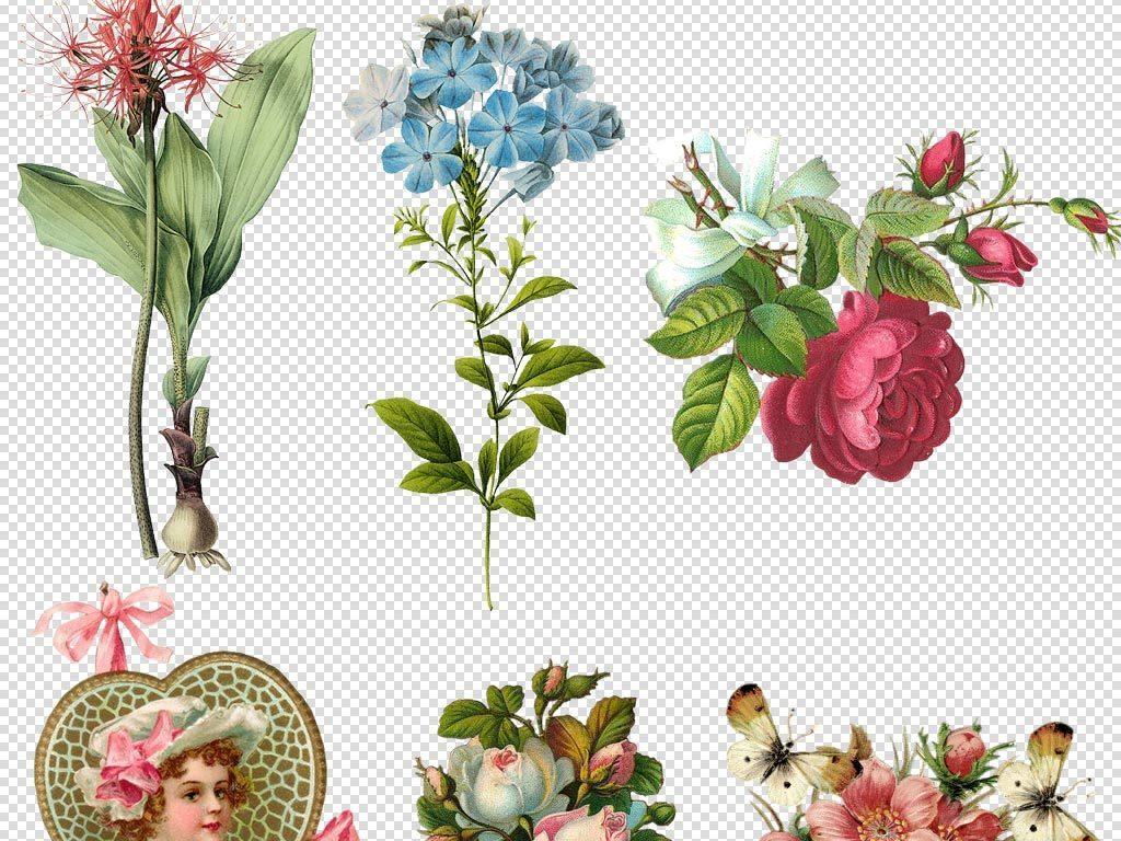 玫瑰花图片psd格式手绘画婚礼素材欧风欧美风格装饰元素元素花朵素材