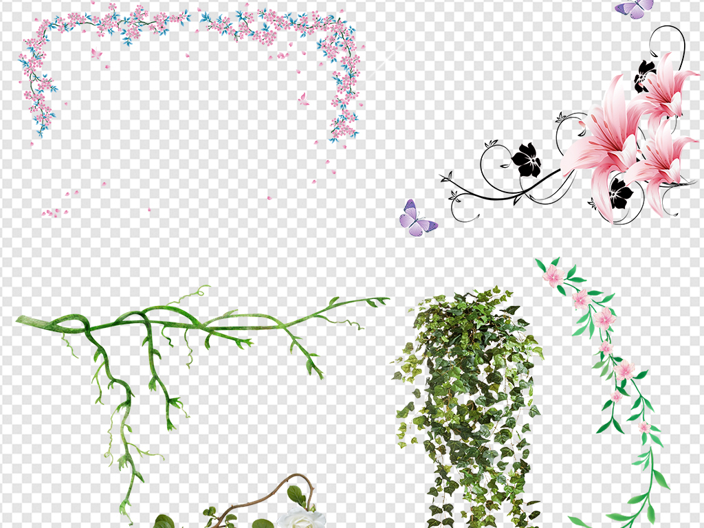 绿色树藤树叶花藤图片素材