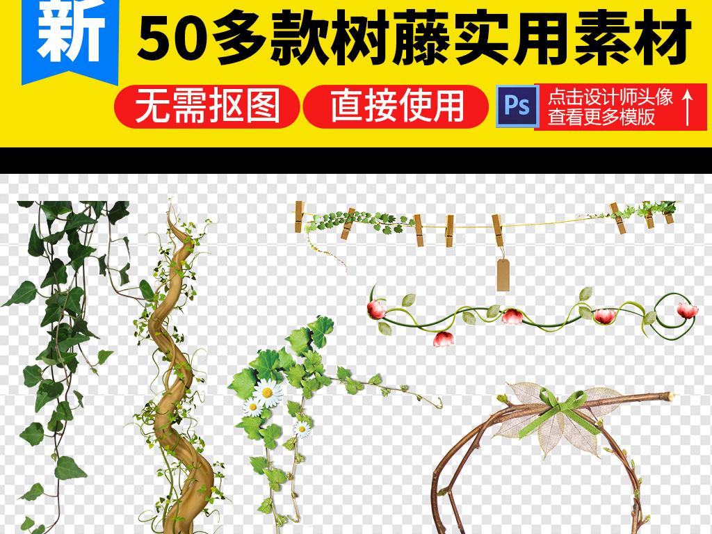 树藤图片树藤花缠绕的树藤手绘树卡通树藤树藤边框