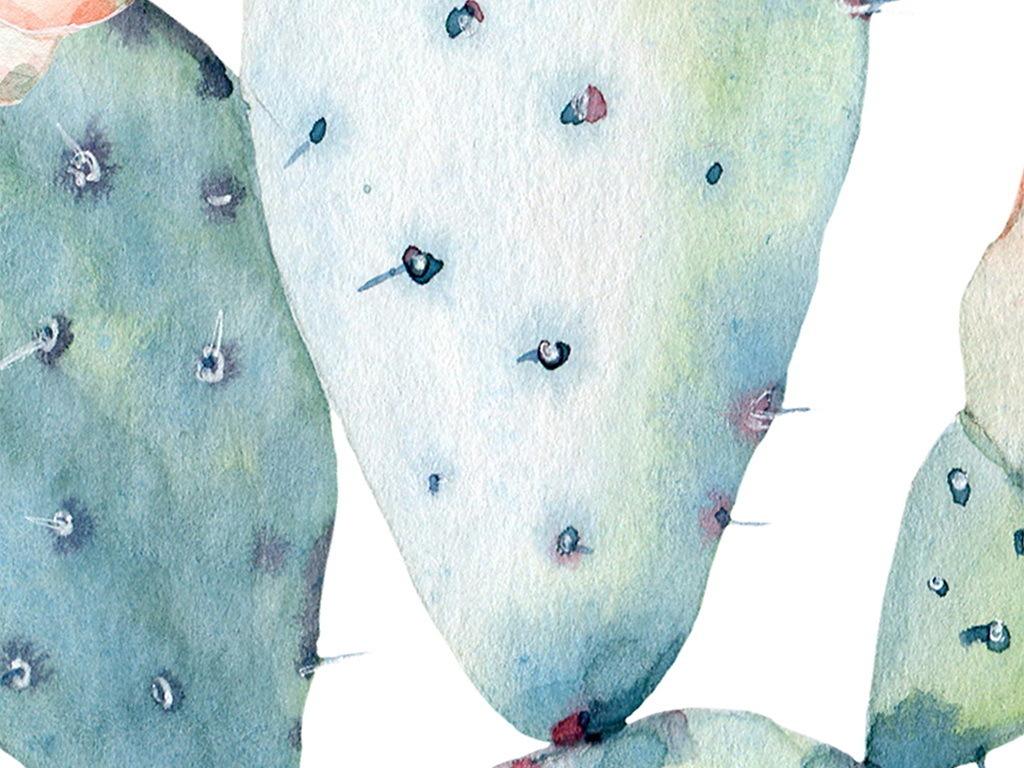 北欧手绘水彩仙人掌多肉植物盆栽装饰画29