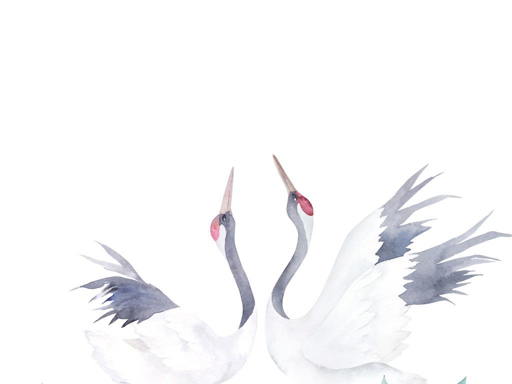 中国风国画丹顶鹤