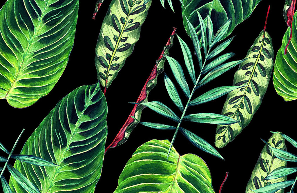 手绘油画热带植物叶子