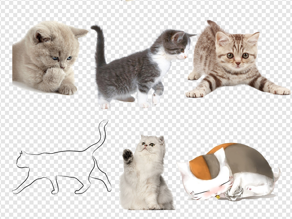 可爱卡通猫咪小猫素材图片下载png素材-动物-我图网