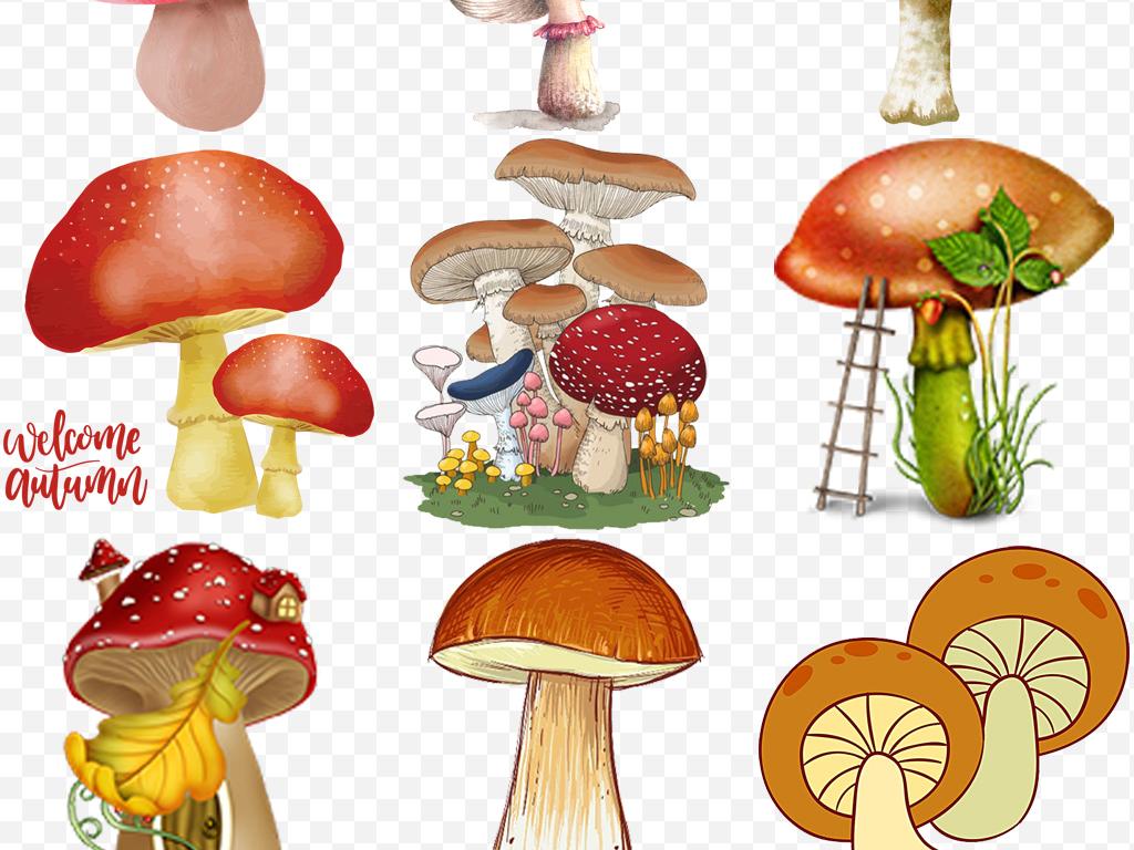 手绘卡通创意蘑菇手绘菌菇儿童幼儿园素材