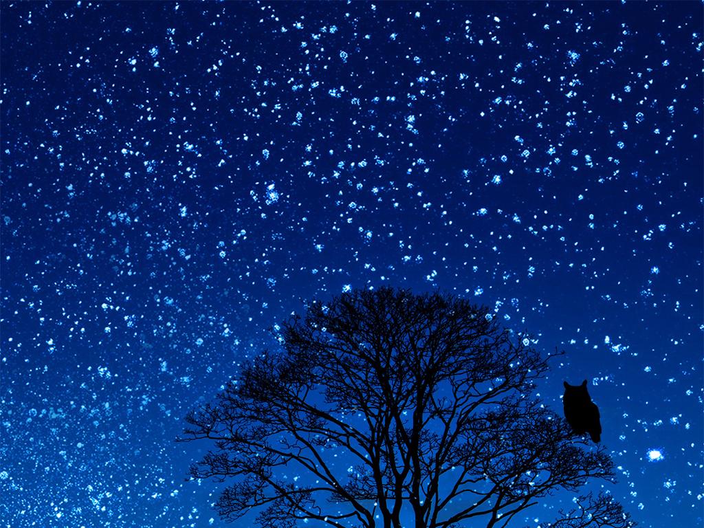 29mb 上传时间 : 2017-08-23 17:21:53 我图网提供精品流行蓝色星空图片