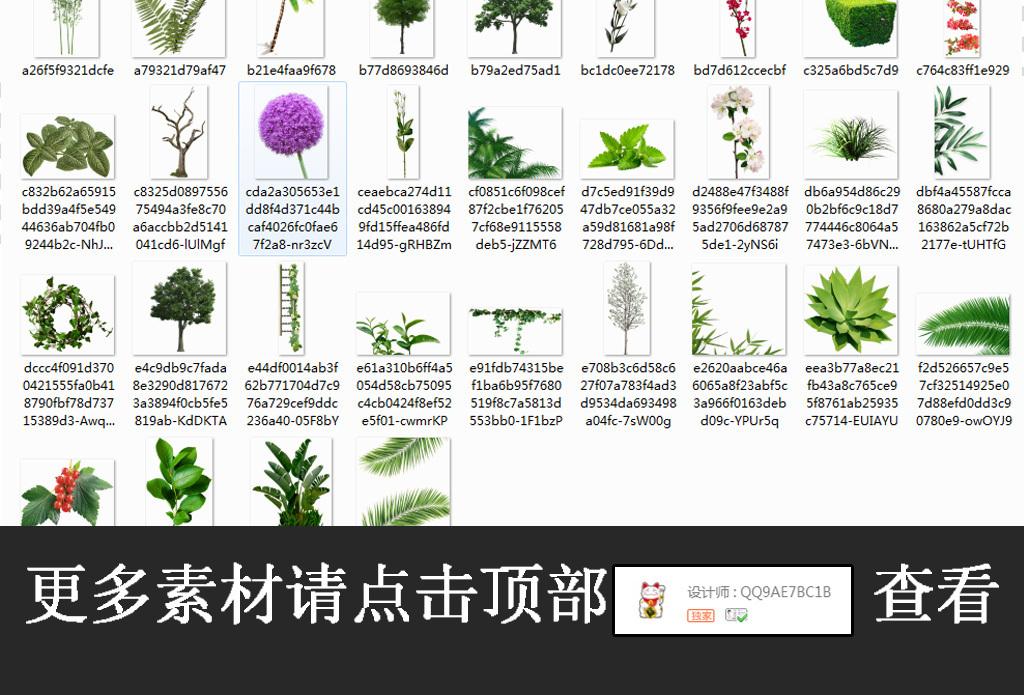 绿色植物藤蔓棕榈叶子设计png免抠图素材