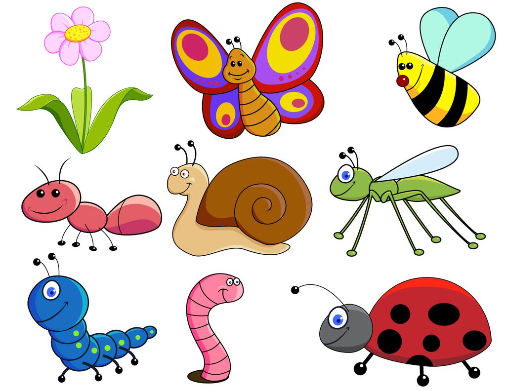 动物图片蝴蝶图片蜜蜂图片蚂蚁图片毛虫图片瓢虫图片素材图多种素材