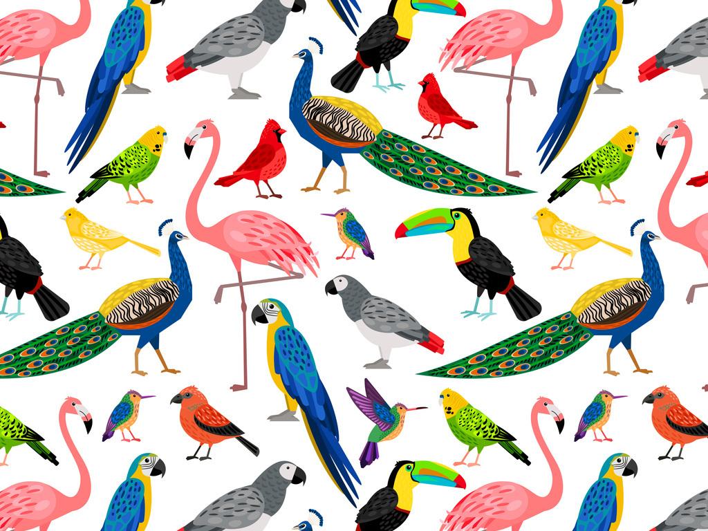 新款手绘各种鸟类鹦鹉孔雀巨嘴鸟