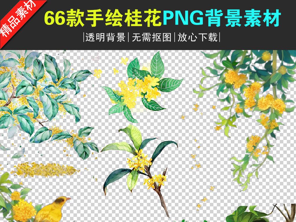 古风素材手绘背景唯美背景png透明背景透明背景桂花手绘素材png背景