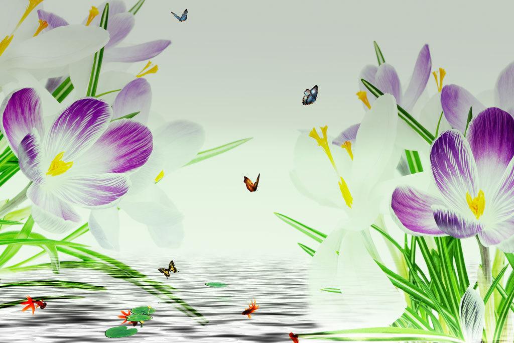 电视背景墙 现代简约电视背景墙 > 现代唯美清新浪漫漂亮蝴蝶兰蝴蝶花