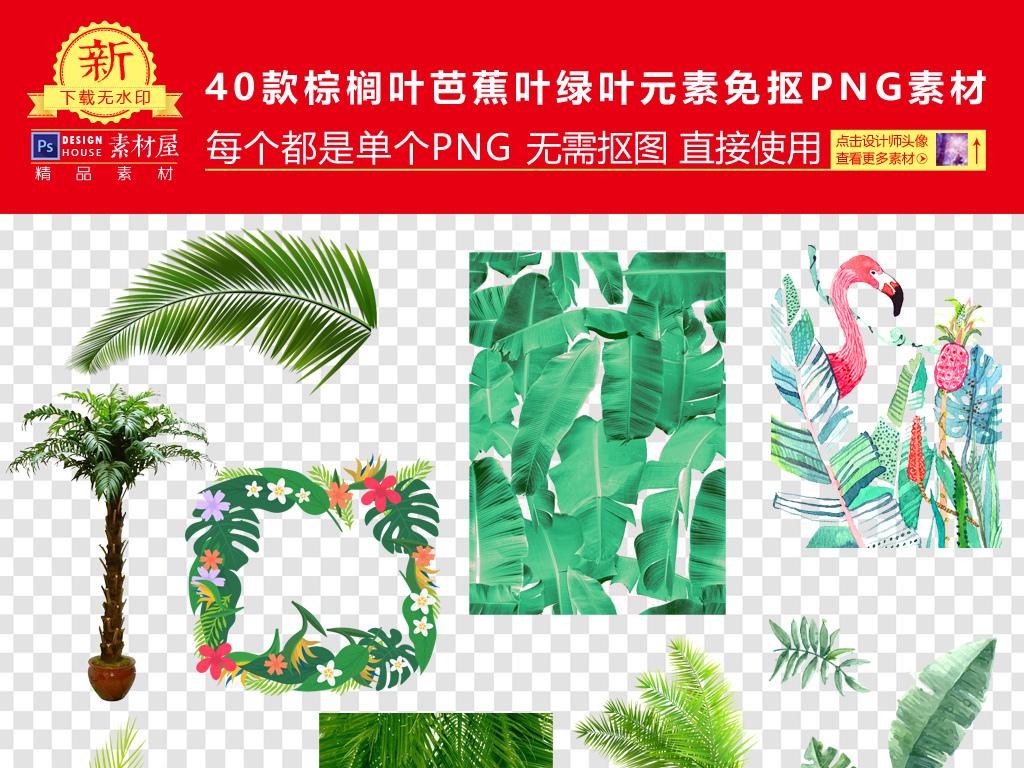 棕榈叶芭蕉叶绿叶元素png海报素材