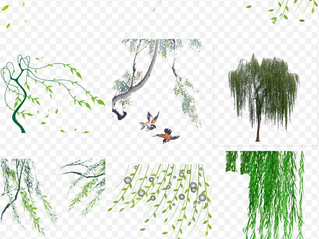 树丛鸟瞰图手绘
