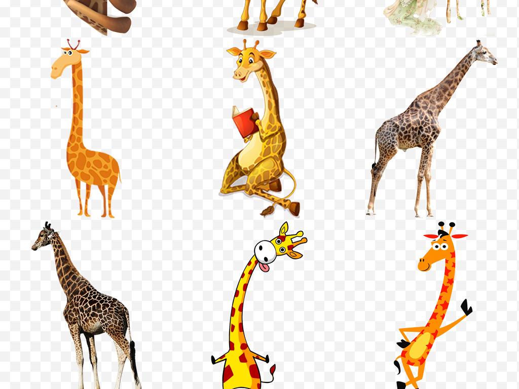 长颈鹿透明素材手绘背景卡通动物卡通背景动物素材长颈鹿卡通动物素材