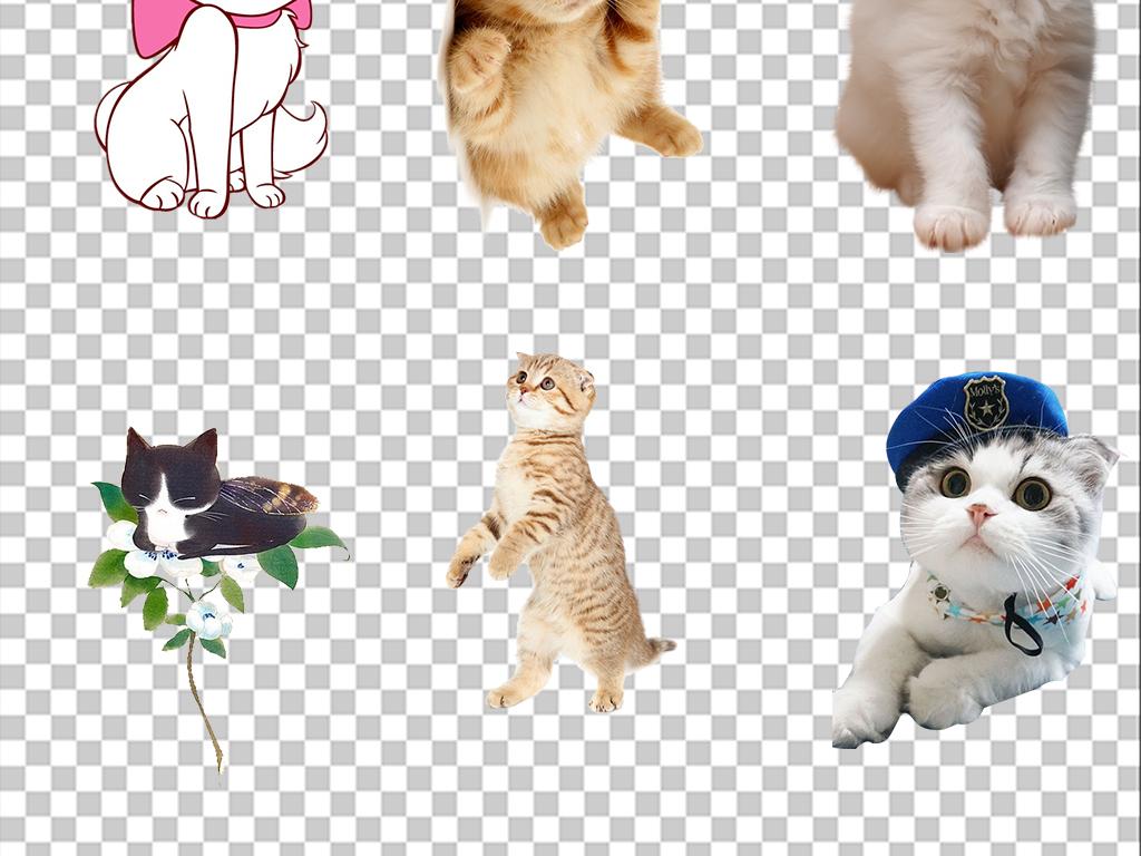 手绘插画小狗设计元素ps海报素材png素材可爱猫咪可爱素材造型设计多