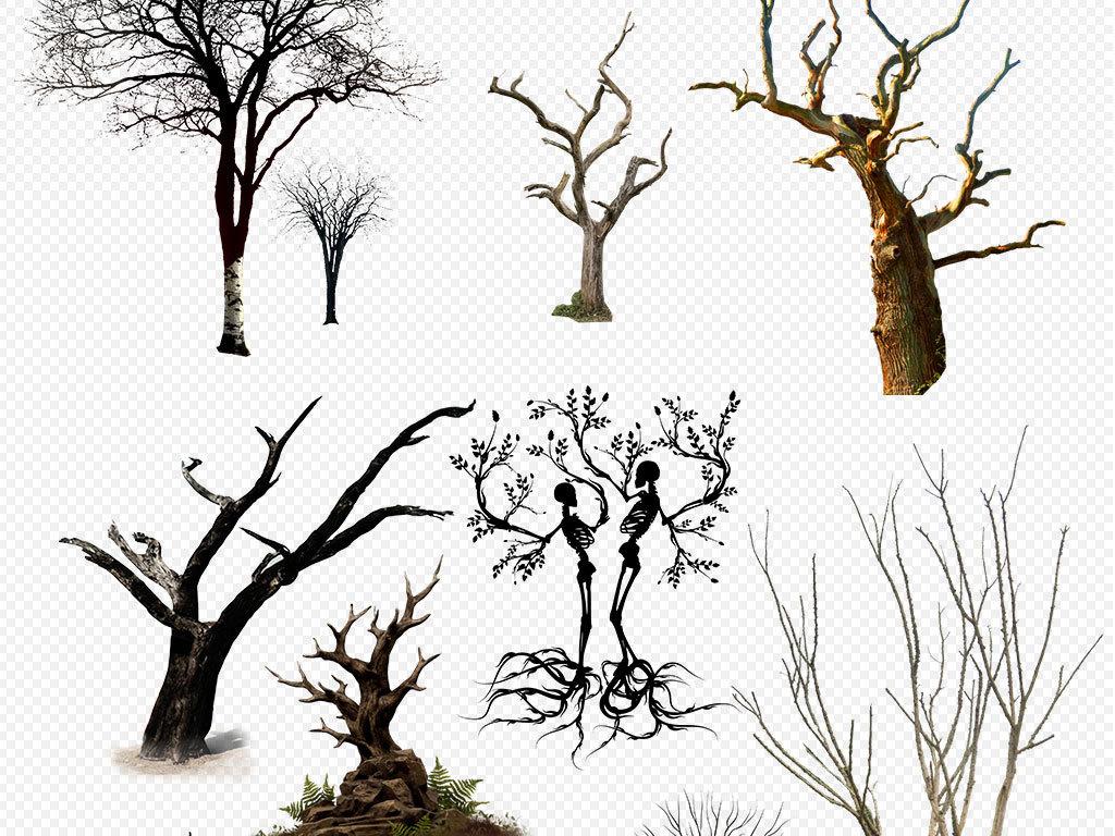 枯树树枝树干图片海报png素材