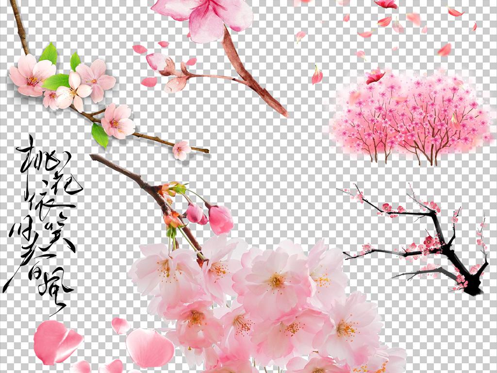 粉色桃花                                  桃花树枝